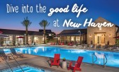 Dive Into The Good Life at New Haven