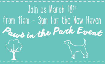 NHblog_pawsinthepark_small (005)