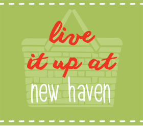 Live It Up At New Haven